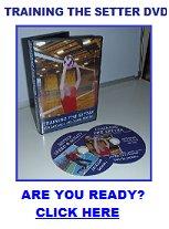 training the setter dvd